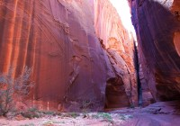 Buckskin Gulch #2